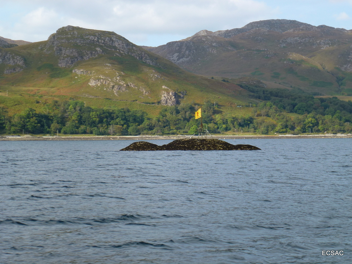 4) Independent Scotland
